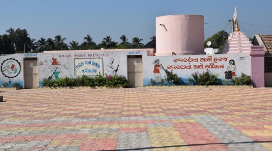 જૂનાગઢ: શિક્ષિત સરપંચે નગીચાણા ગામની કરી કાયાપલટ, ગામમાં 100 ટકા ઘરોમાં શૌચાલય